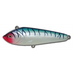Tunita Blue Mackerel